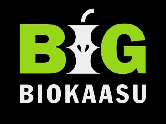 Brändäys alkoi BIG-biokaasun nimen ja logon suunnittelulla.